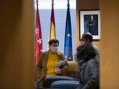 Encarnación Burgueño, en la Asamblea de Madrid, este viernes.