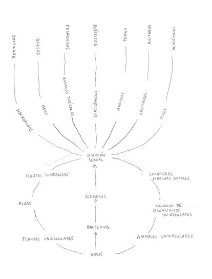 El origen de las especies. Ilustración de David Byrne para su libro 'Arboretum'