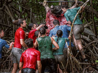 Varios concursantes intentan arrancar con la boca trozos de un cerdo en el desafío caníbal.