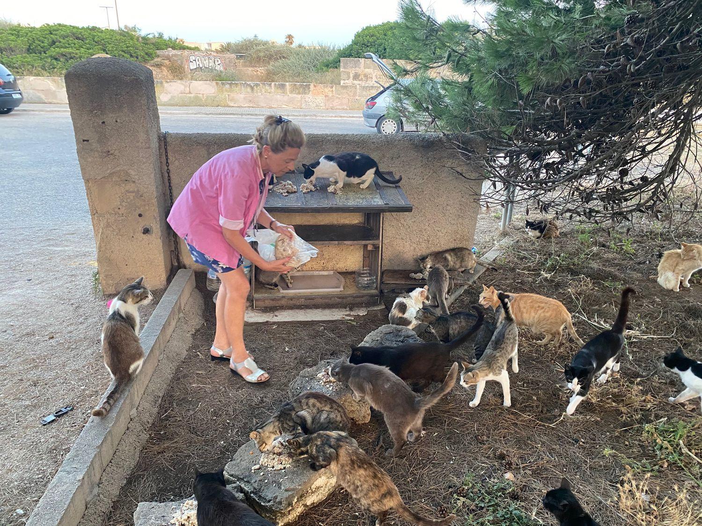 Asunción Capllonch alimentando a un grupo de gatos en Colonia de Sant Jordi (Mallorca).