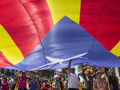 Una bandera estelada durante la manifestación contra el Plan Hidrológico de la Cuenca del Ebro, que discurrió por las calles de Barcelona en mayo.