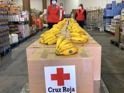 Varios trabajadores de Cruz Roja con plátanos de Canarias.