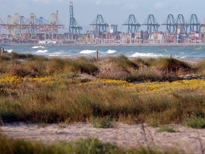 Vista general del Puerto de Valencia desde la playa de El Saler, al sur del puerto.