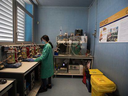 Simulador Gastrointestinal del CIAL-CSIC en el Instituto de Investigación en Ciencias de la Alimentación.