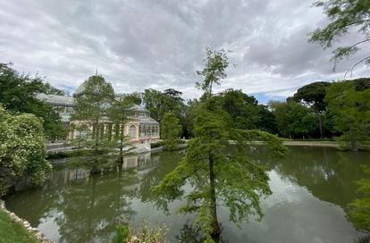Estanque del Palacio de Cristal ubicado en los Jardines de El Buen Retiro, durante el estado de alarma.