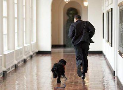 El presidente de EE UU, Barack Obama, con su nueva mascota, en los pasillos de la Casa Blanca, en Washington.