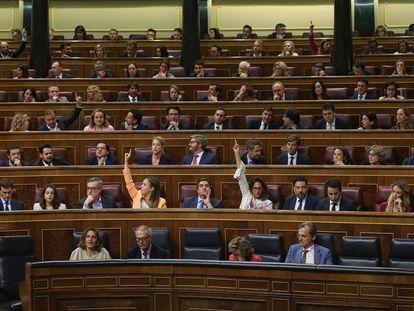 El Pleno del Congreso de los Diputados el pasado día 10.