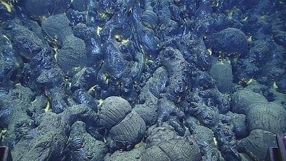 En las dorsales oceánicas y las erupciones en islas que llegan al mar es la habitual la formación de lavas almohadilladas como las de la imagen.