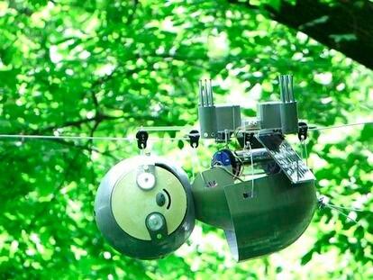 Un robot perezoso para combatir el cambio climático
