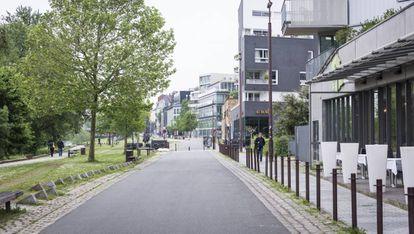 Las malas hierbas crecen en las calles de Nantes y se han convertido en una parte importante de la ciudad