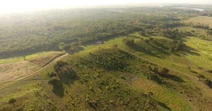 Una visión aérea de la zona del suroeste de Aguada Fénix (Tabasco, México).