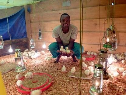 Mi granja (de pollos) en África