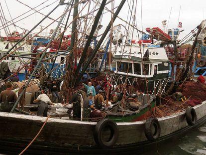 Barco pesquero marroquí en el puerto de la ciudad sahariana de Dajla, el pasado 15 de febrero.