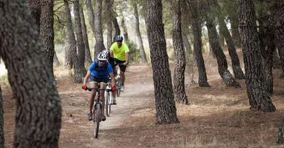 Ciclistas de montaña (mountain bike) en La Pedriza, en el Parque Nacional de la Sierra de Guadarrama, Madrid (España).