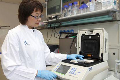 Una enfermera realiza pruebas para detectar la bacteria <i>E. coli.</i>