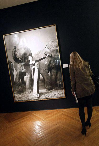 La fotografía de Richard Avedon (1923- 2004) 'Dovima con los elefantes', récord mundial del artista estadounidense al venderse por 841.000 euros en una subasta en París.