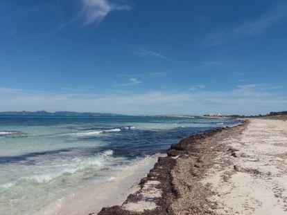 Las playas de Illetes, en Formentera, el sábado 2 de mayo.