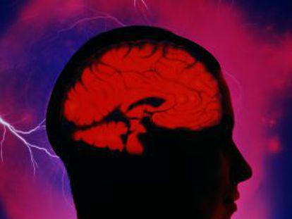 Un micromotor navega por el cerebro