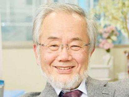 Yoshinori Ohsumi, al conocer que había recibido el premio Nobel.