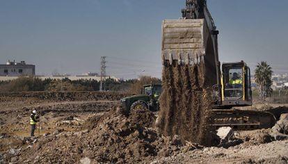 Obras en el puerto de Sevilla para las nuevas instalaciones de Amazon, que ocupará una parcela de 35.324 metros cuadrados.
