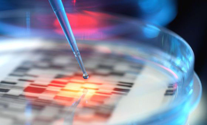 El genoma humano tiene cerca de 3.000 millones de letras de ADN.