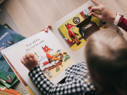 La interacción del niño con los animales promueve tanto el desarrollo cognitivo como emocional, a través de estas vivencias construye su pensamiento y conocimiento.