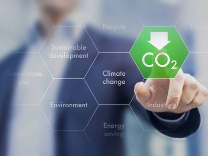 Los que luchan contra el cambio climático (y no son ONG)
