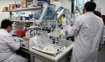 Varios investigadores de la empresa donostiarra Viralgen, elegida para fabricar una vacuna contra el coronavirus que está desarrollando el Massachusetts General Brigham Hospital (MGB).