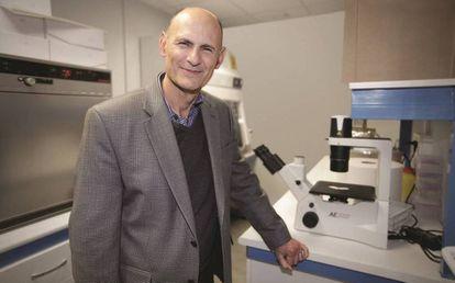 El investigador espanol Juan Carlos Izpisúa.