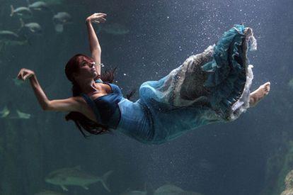 Presentación del espectáculo <i>Nacidos del mar</i> , en el Aquarium de Roquetas de Mar (Almería).