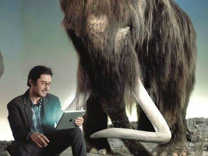 Nogués-Bravo, junto a un mamut en el Museo de Historia Natural de Dinamarca.
