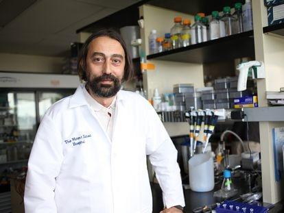 Adolfo García-Sastre, virólogo experto en patógenos emergentes del Hospital Monte Sinaí de Nueva York.