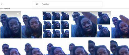 """Resultados de Google Photos a la búsqueda """"gorilas"""" del usuario que lo denunció."""