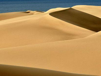 Reserva Natural Especial de las dunas de Maspalomas (Gran Canaria)