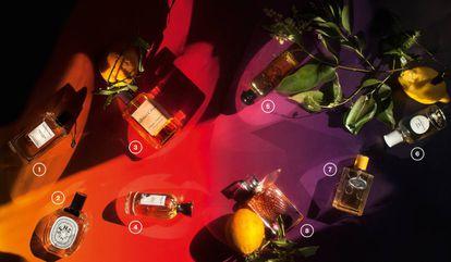 <b>1. Néroli Amara Collection Extraordinaire</b>, de Van Cleef & Arpels. Inspirada en la sombra de un naranjo amargo en flor, incluye en su jugo nerolí, absoluto de azahar, petitgrain (naranjo agrio) y esencia de cáscara de naranja. 140 euros (75 ml). | <b>2. Eau des Sens</b>, de Diptyque. Esta agua de colonia es un auténtico tributo a la naranja amarga: en su corazón hay flor de naranja, nerolí y petitgrain. Le acompaña el enebro, el sándalo y la vainilla. 98 euros (100 ml). | <b>3. Orange Sanguine</b>, de Atelier Cologne. Este extracto de perfume tiene una concentración de aceites esenciales naturales del 15%, en el que destacan las notas de naranja sanguina de Italia, naranja amarga de Sevilla, jazmín de Egipto y haba tonka de Brasil. 150 euros (100 ml). | <b>4. Bois D'Hadrien</b>, de Annick Goutal. Perfume unisex. Su concentrado de cítricos contrasta con el ciprés, el abeto, la hiedra y las notas amaderadas y especiadas. 102 euros (50 ml). | <b>5. Eau de Néroli Doré</b>, de Hermès. Esta colonia rinde homenaje al mar Mediterráneo. El acorde de azafrán es el encargado de aportar el toque de sol. 101 euros (100 ml). | <b>6. Eau de Givenchy (2018)</b>, de Givenchy. Esta fragancia para hombres y mujeres mezcla notas frescas (naranja, mandarina y bergamota) y amaderadas (madera de cedro y almizcle) para expresar las sensaciones de una tarde en la Costa Azul. 79,50 euros (100 ml). | <b>7. Infusion Mandarine</b>, de Prada. Se trata de la primera fragancia cítrica en incorporarse a la colección Les Infusions. Constituye una representación coreografiada de los matices esenciales de una naranja, con las notas presentes en la superficie y en la pulpa de la fruta. 114,50 euros (100 ml). | <b>8. La Vie Est Belle L'Éclat</b>, de Lancôme. Esta eau de toilette está compuesta por un corazón absoluto de flor de azahar, absoluto de jazmín de Arabia y esencia de nerolí que deja paso a un fondo de ámbar de madera y almizcle. 111 euros (100 ml).