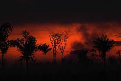 Humo se desprende de un fuego ilegal de la selva del Amazonas en el norte de Sinop en Mateo Grosso, el martes 11 de agosto.
