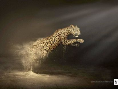 """ONG WWF. """"La desertización destruye 6.000 especies cada año"""". Agencia Contrapunto BBDO, España."""