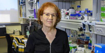Margarita del Val, viróloga y responsable de la plataforma Salud Global del CSIC.