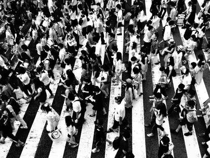 Las masas son más listas con influencia social y sin líderes de opinión