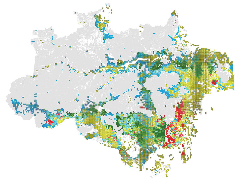 Área degradada de la selva amazónica. Cada color se corresponde con un factor degradante. El verde, para la tala, el rojo para los incendios, el azul para el efecto límite y los amarillentos para la fragmentación forestal. El tono indica la intensidad de la perturbación.