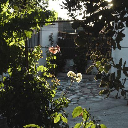 Un patio interior de la colonia al atardecer.