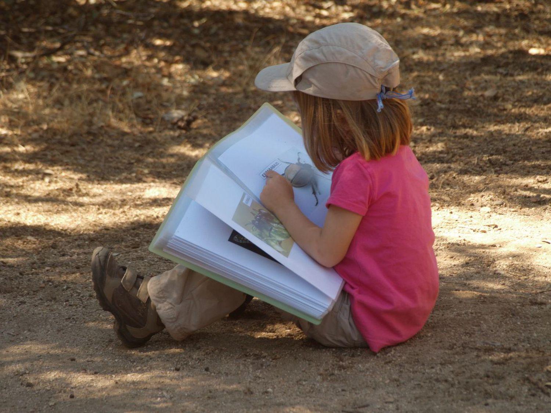 La naturaleza te permite conectar pero también investigar y mantener activos los procesos de curiosidad. En la imagen una niña investiga un bicho que ha encontrado en un día de 'cole' en el grupo de juego en la Naturaleza Saltamontes, en Madrid