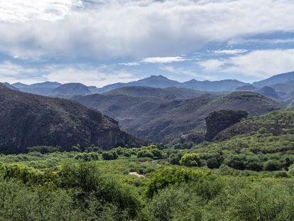 Vista de los alrededores del poblado de Bacanuchi, Sonora, donde se encuentran los yacimientos de litio aún sin explotar.