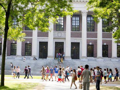 Imagen de la biblioteca principal de la Universidad de Harvard.