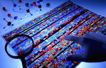 ¿Condiciona la genética el comportamiento social humano?