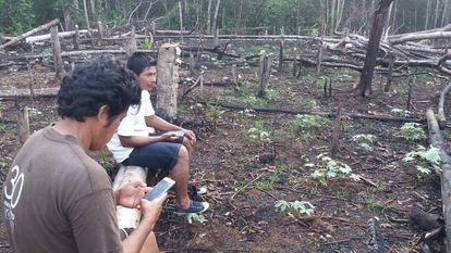 Indígenas que participan en las misiones de vigilancia forestal comunitaria encuentran áreas deforestadas próximas al territorio Copal Urco.