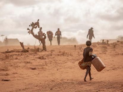 Medio millon de niños de menos de cinco años están en riesgo de sufrir desnutrición severa en Madagascar, un país azotado por cuatro años consecutivos de sequía y hoy amenazado por una hambruna. En la foto, una niña yendo a buscar agua en el sur de Madagascar.