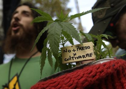 Una manifestación a favor de la legalización de la marihuana en Buenos Aires, en 2017.