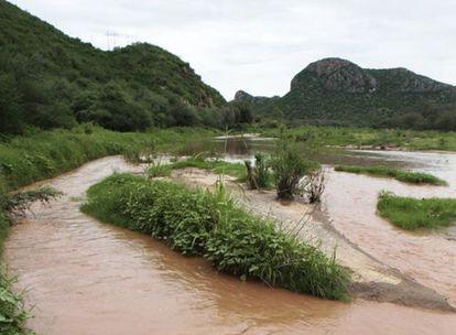 Las aguas del río Sonora, tras el derrame.