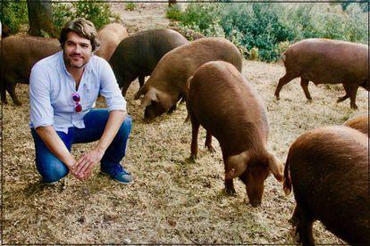 Pepe Simón, con los cerdos rubio dorado.